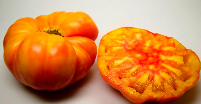 Image result for northern lights tomato
