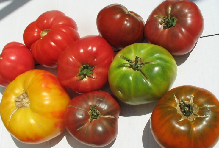 see available varieties