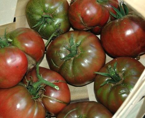 the black tomatoes. Black Bedroom Furniture Sets. Home Design Ideas