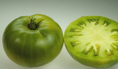 Green-When-Ripe Tomatoes