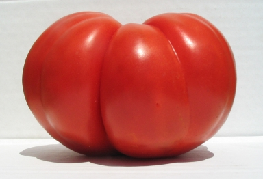 This Is The Best Tasting Tomato Of My 50 Years Growing Tomatoes Name It What You Want Share With Others Are Person I D Like To Introduce